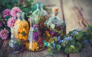 Como Decorar Con Flores Secas Bekia Hogar - Decorar-con-flores-secas