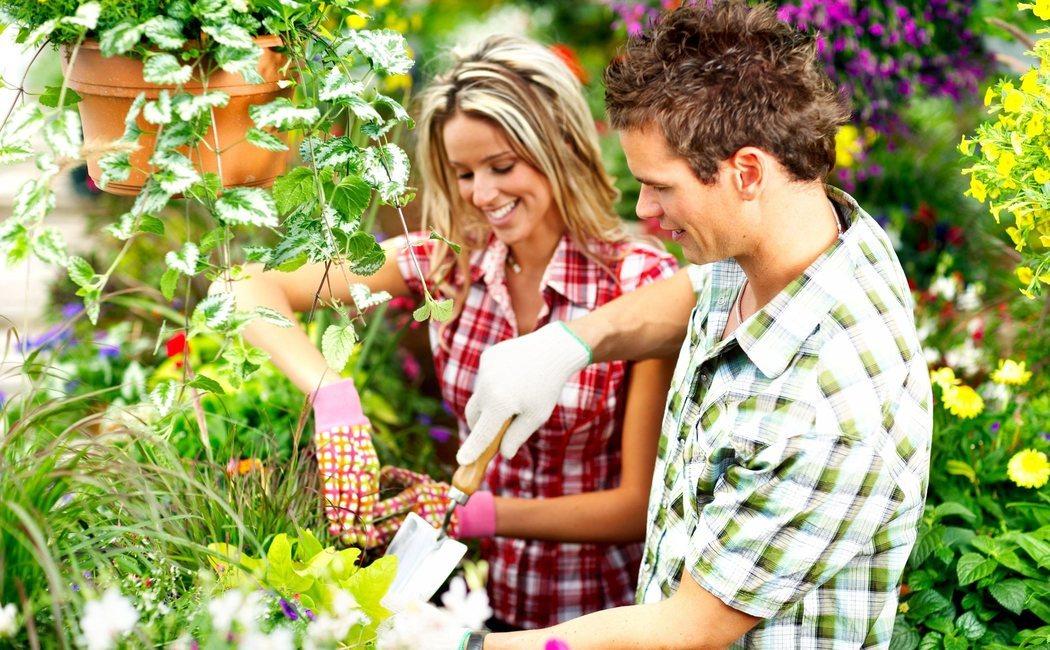 6 claves para cuidar el jardín en verano