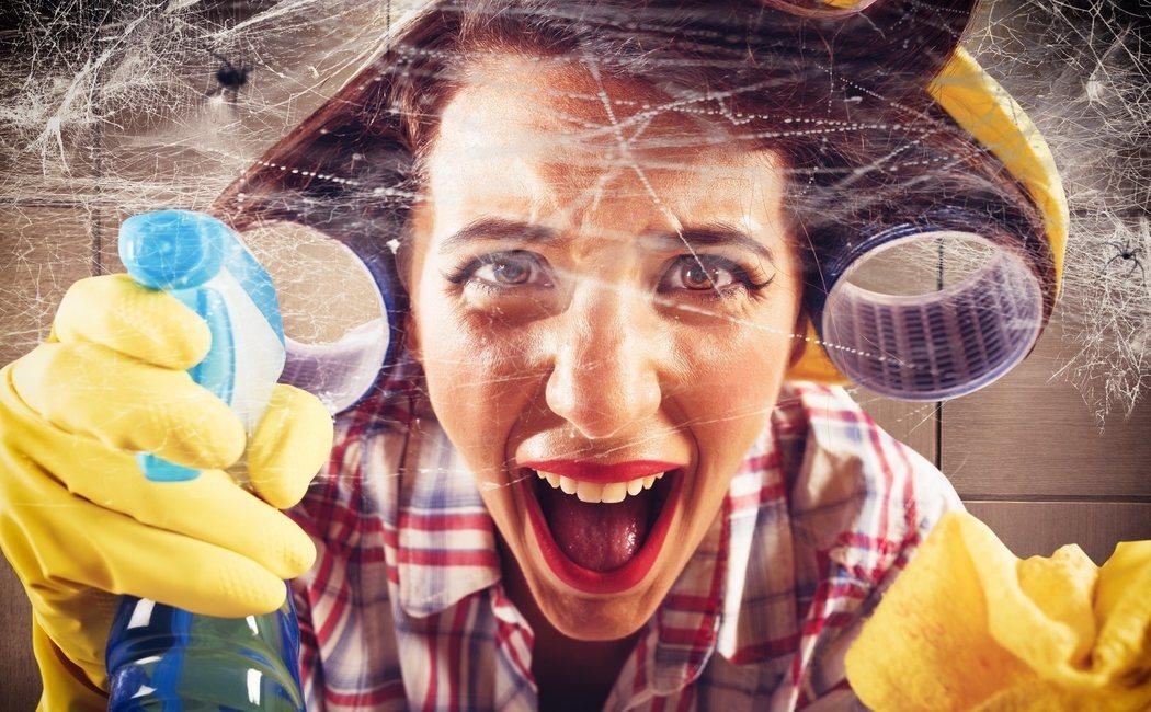 Cómo hacer que desaparezcan las arañas de tu casas