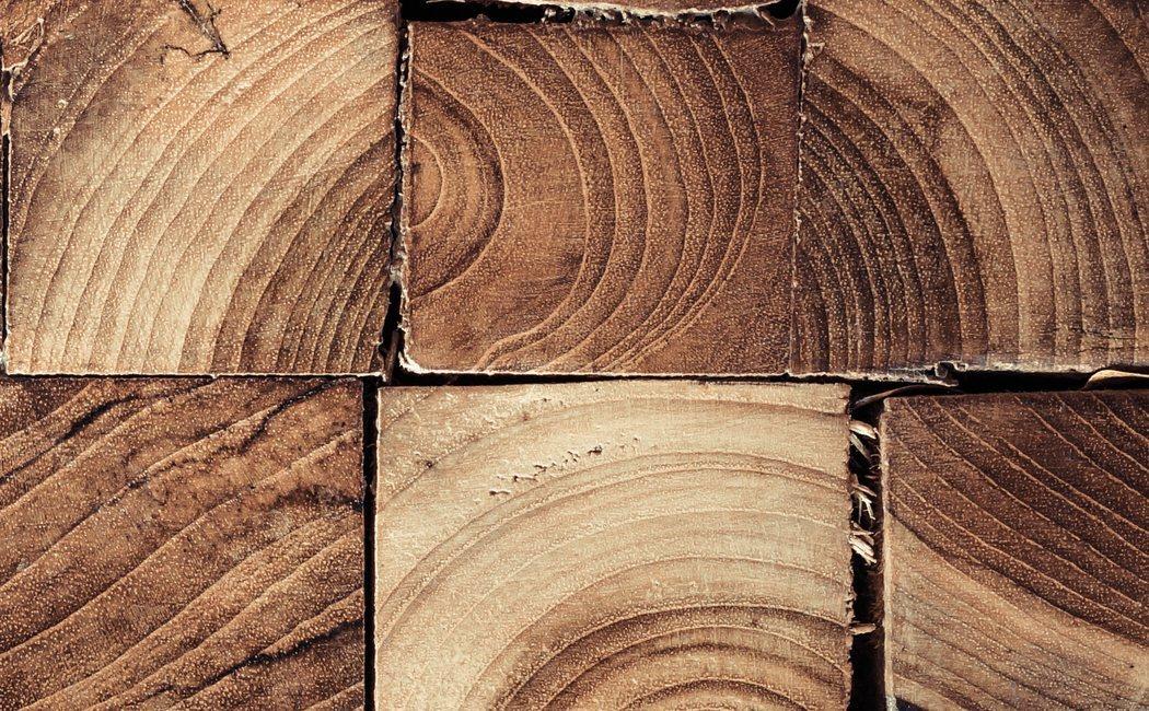 Componentes básicos de la madera
