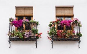 Cómo Decorar La Terraza O El Balcón Con Plantas Bekia Hogar
