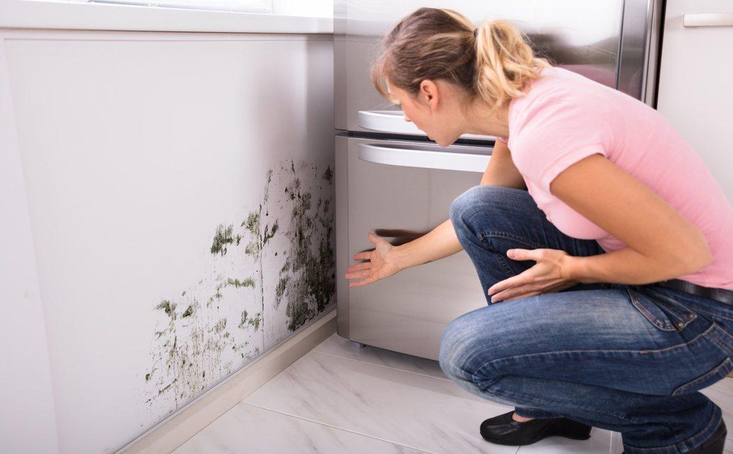Cómo quitar el olor a humedad