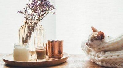 Hygge: Descubre cómo tener un hogar feliz