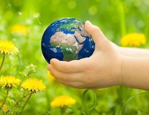 Frases Sobre El Medio Ambiente Para Reflexionar Bekia Hogar