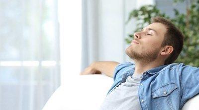 Elementos clave para tener un hogar pacífico