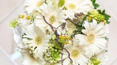 Flores blancas para regalar