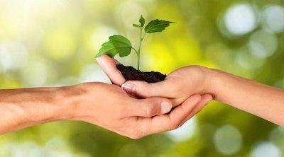 Cómo llevar una vida ecológica