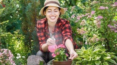 Cómo ahorrar agua en el jardín