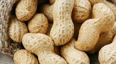 Cómo cultivar cacahuetes