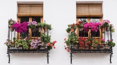 Cómo decorar la terraza o el balcón con plantas